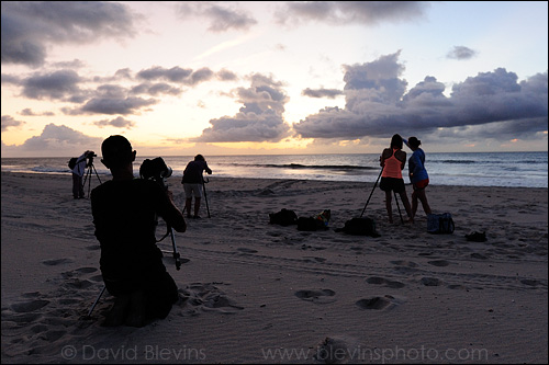 Workshop participants photographing sea turtle tracks at dawn.   - David Blevins